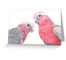 Tickled Pink Greeting Card