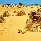Emu Footprints - Pinnacles In The Desert - HDR by Colin  Williams Photography