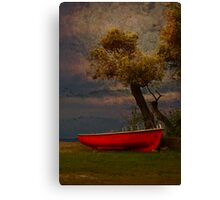Under the Olive tree Canvas Print