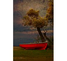 Under the Olive tree Photographic Print
