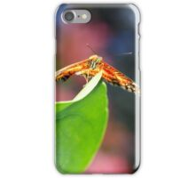I believe, I can fly!! iPhone Case/Skin
