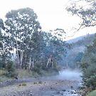 Black Snake Creek Morning Mists by George Petrovsky