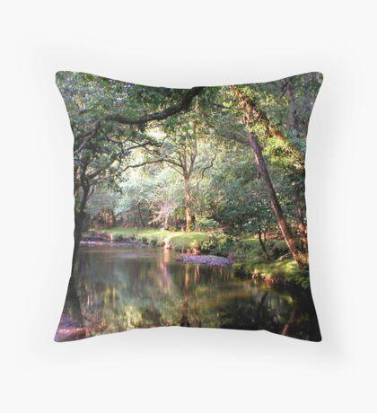 Dartmoor Stream Throw Pillow