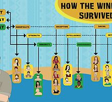 Survivor Winners Infographics by Katie Tedesco