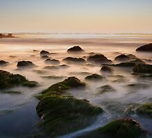 Waves on the rocky shores of La Jolla, California by DArthurBrown