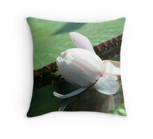 Lilypad Flower Throw Pillow