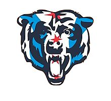 Chicago Flag Bears Logo Photographic Print