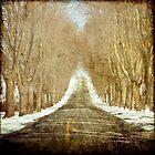 The Long Road by jodyangel