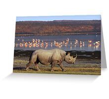 BLACK RHINO - LAKE NAKURU Greeting Card