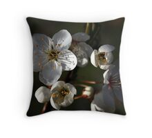 A New Season Coming into Bloom Throw Pillow