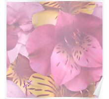 Soft Spring Flowers Poster
