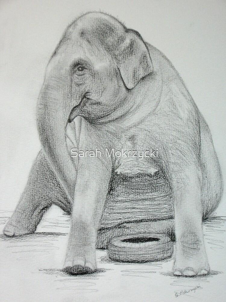 Happy Elephant by Sarah Mokrzycki