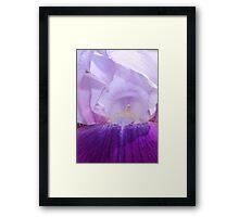 Purple Iris Flower with Bug Friend Framed Print