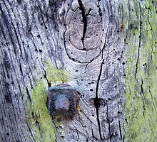 Wood and Iron by Wulfrunnut