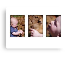 autumn baby - a story in pictures Canvas Print