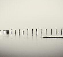 remnants 2 by Bill vander Sluys