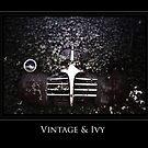 Vintage & Ivy by Tara Johnson