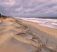 Jagged Dune Fence by David Turton