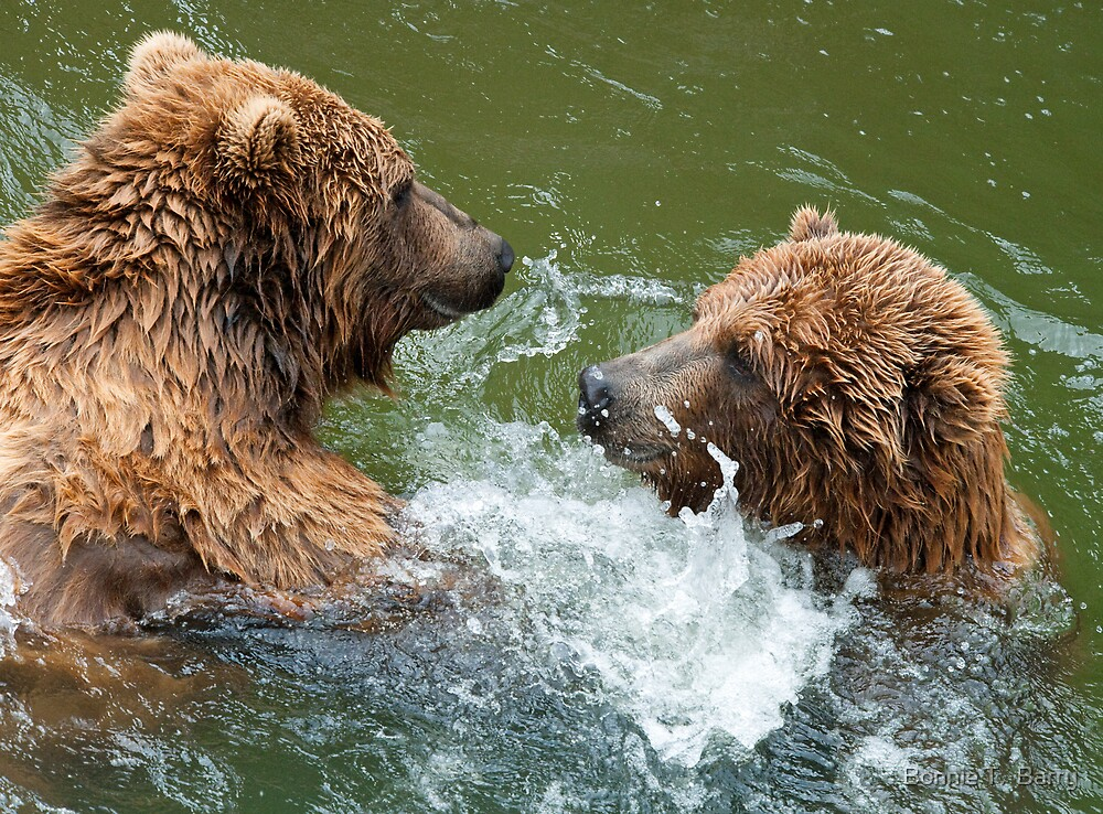 Grinning Grizzlies by Bonnie T.  Barry