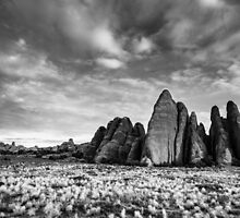 Perfect Fins – Arches National Park, Utah by Jason Heritage