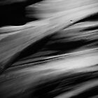 Tendons – Antelope Canyon, Arizona by Jason Heritage