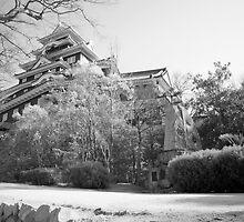 Okayama Castle IF by Harlequitmix