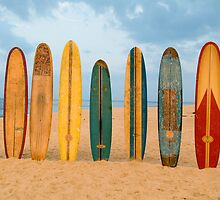 Longboards by David Turton