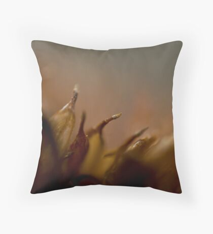 dried sedum Throw Pillow