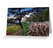 1173-Furry Bunch Greeting Card