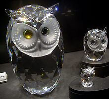 Crystal Owls by sstarlightss