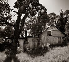 old stuff, Wollombi NSW by ozzzywoman