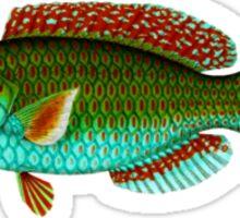 Turquoise fish Sticker