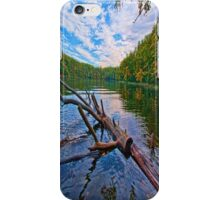 Water Logged iPhone Case/Skin
