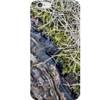 Silver Maple Root, Moss, Grass, Flower iPhone Case/Skin