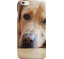 Gentle Giant iPhone Case/Skin