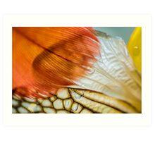 Veil That Shades My Heart Art Print
