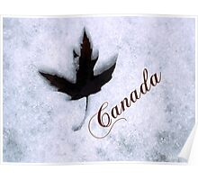 Red Maple Leaf Snow Canada Poster