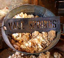Vale Springs  by Christie-Anne  Piggott