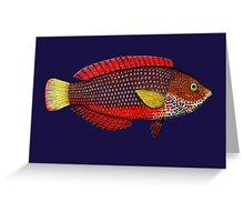 Very fishy Greeting Card