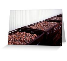 Truck-loads of pineapples. Greeting Card