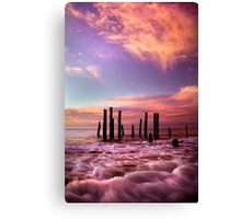Wave Motion - Port Willunga. Canvas Print