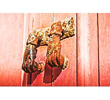 Nice knockers Photographic Print