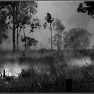 The Burnoff in B&W by Chris Cohen