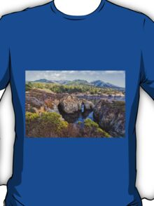 Pelican Point, Point Lobos Natural Reserve T-Shirt
