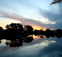 Tropical Sky ~ Lake Reflection by SummerJade