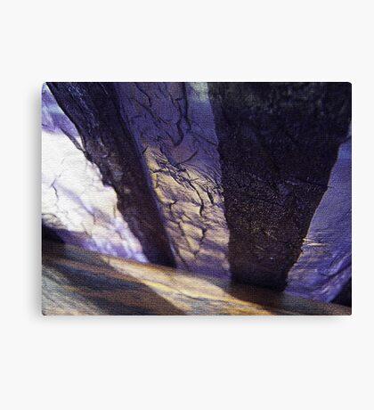 morning shadow Canvas Print
