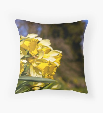Trumpeting daffodils Throw Pillow
