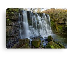 Scale Haw Force Canvas Print