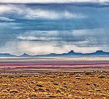 Desert Storm by Lou Novick