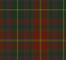 00343 Meath County District Tartan  Sticker